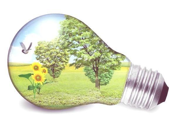 dia-mundial-de-la-eficiencia-energetica-ecosistema