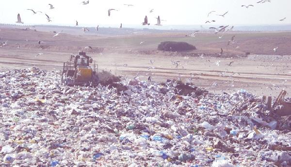 bolsas basura