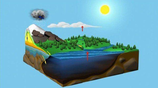 estados del ciclo del agua