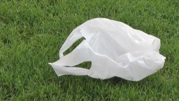 bolsa plastico