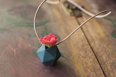 12-bonitas-formas-de-tener-plantas-de-interior-collar