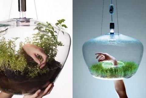 12-bonitas-formas-de-tener-plantas-de-interior-lampara