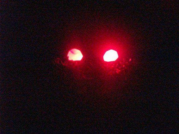 manualidades-halloween-ninos-decoracion-arbustos-luz