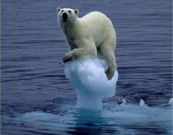 na-sombrilla-gigante-en-el-espacio-para-solucionar-el-calentamiento-global-5