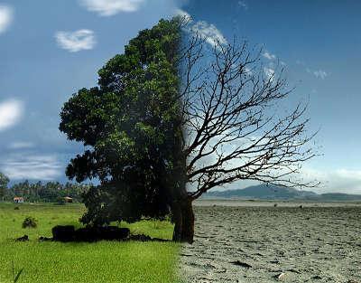 na-sombrilla-gigante-en-el-espacio-para-solucionar-el-calentamiento-global-6