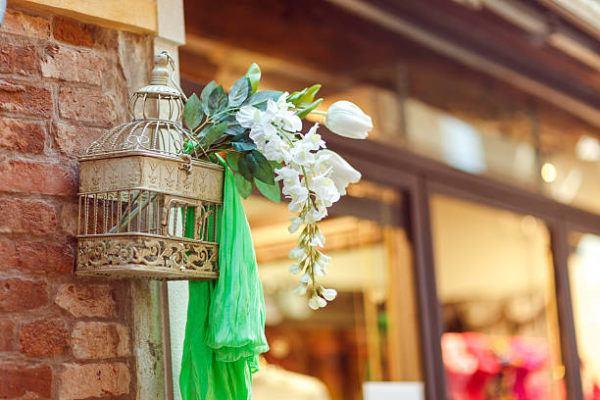 Reciclaje ideas para decorar tu casa con plantas jaula
