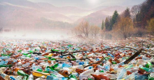 Los delitos contra el medio ambiente sanciones