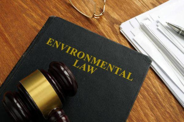 Los delitos contra medio ambiente sus sanciones