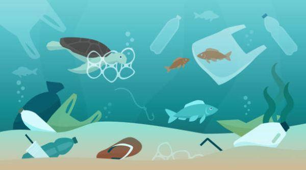 Mejores dibujos medio ambiente contaminacion fondo mar
