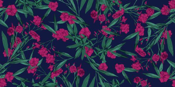 Plantas mas venenosas podrian matarte la adelfa