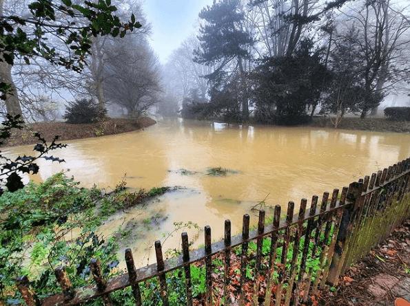 ¿Qué es la Contaminación Biológica? Tipos y ejemplos en el agua