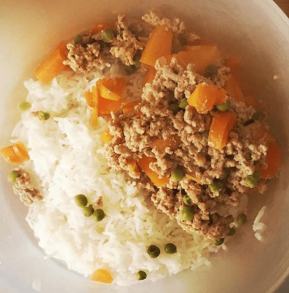 Beneficios y recetas de comidas caseras para perros atún, arroz y zanahoria