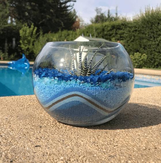 Los mejores trucos y consejos para hacer nuestro terrario riego