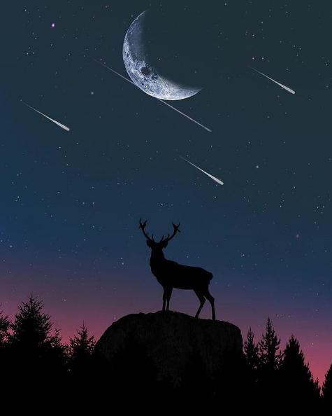 Calendario lluvia de Estrellas 2022 luna