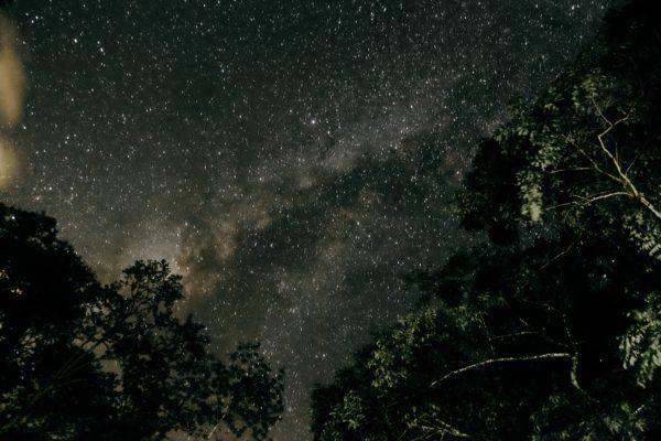 Geminidas 2022 cuando donde ver ultima lluvia estrellas del ano 5