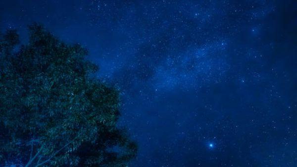 Lluvia estrellas leonidas 2022 cuando es se produce como ver donde ponerse