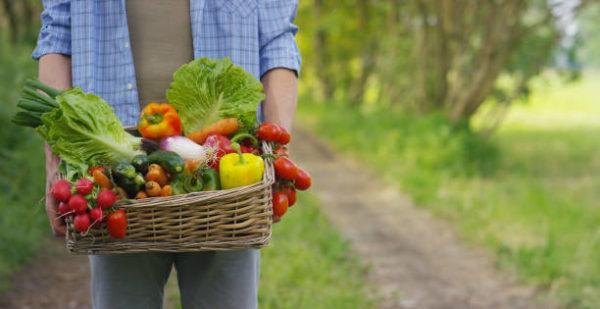 Calendario anual de frutas y verduras de temporada 5
