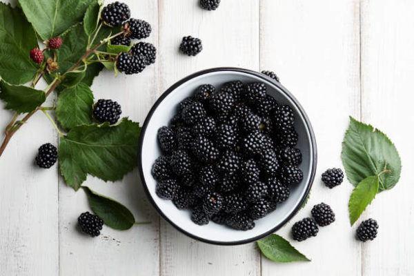 Que frutas y verduras comer en agosto calendario de temporada moras