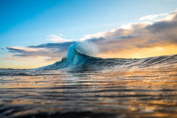Dia mundial de los oceanos cuando es por que se celebra cuantos oceanos hay cual es el mas grande