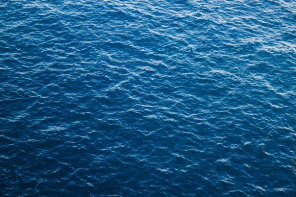 Dia mundial de los oceanos cuando es por que se celebra cuantos oceanos hay y cual es mas grande