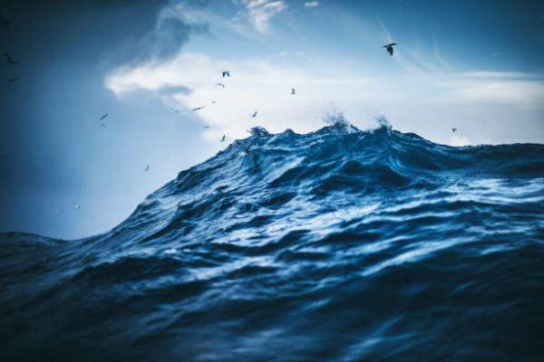 Dia mundial de oceanos cuando es por que se celebra cuantos oceanos hay cual es el mas grande