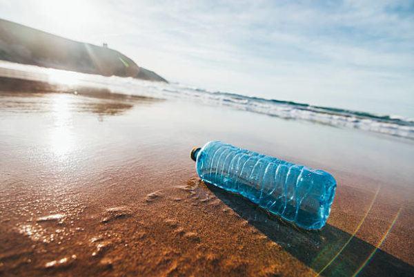 Dia mundial de oceanos cuando es por que se celebra cuantos oceanos hay y cual es el mas grande