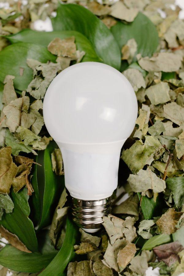Cómo reciclar todos los tipos de bombillas medio ambiente