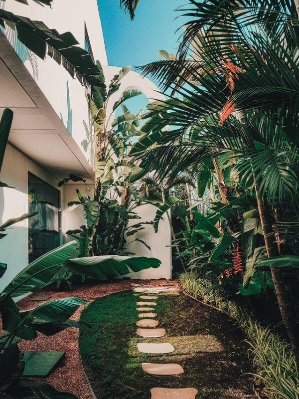Los mejores consejos para desarrollar la resiliencia en nuestro jardín compromiso