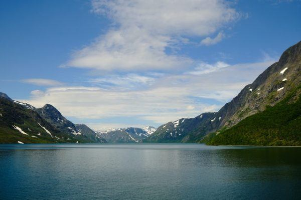 Tundra: qué es, sus características, clima, tipos, fauna y flora agua