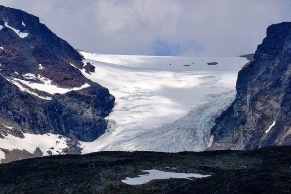 Tundra: qué es, sus características, clima, tipos, fauna y flora permafrost
