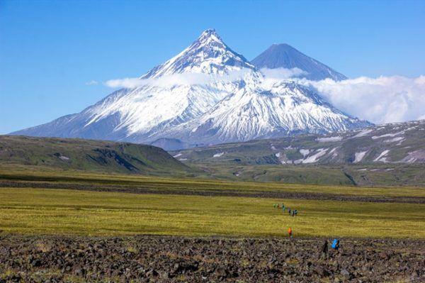 Tundra: qué es, sus características, clima, tipos, fauna y flora desértico