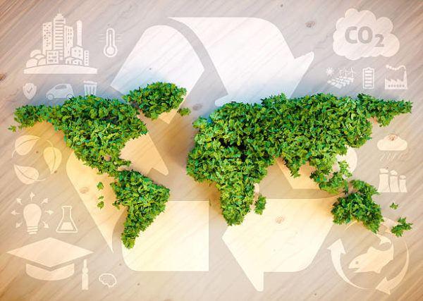 Dia mundial de la ecologia cuando se celebra y como podemos celebrarlo