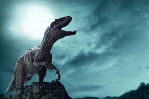 Que es dinosaurios diferencias entre dinosaurios reales y las pelaculas en que epoca vivieron y cuantos habia
