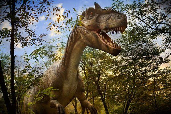 Que es un dinosaurio diferencias dinosaurios reales y las pelaculas en que epoca vivieron y cuantos habia