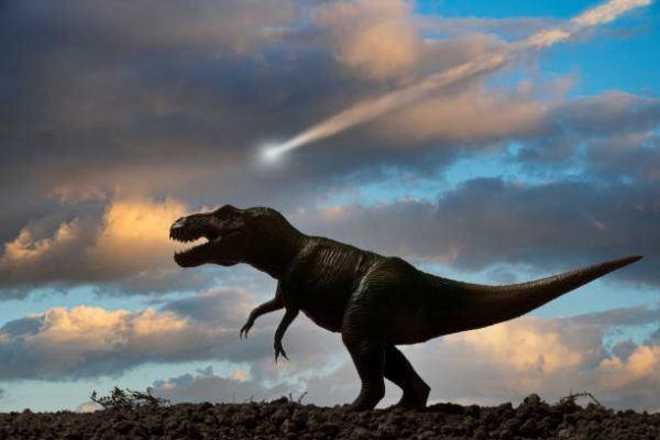 Que es un dinosaurio diferencias entre dinosaurios reales y las pelaculas en que epoca vivieron cuantos habia