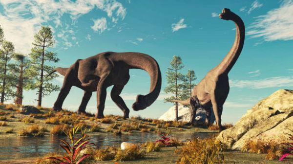 Que es un dinosaurio diferencias entre dinosaurios reales y las pelaculas en que epoca vivieron y cuantos habia