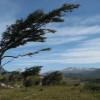 ¿Cómo se forma el viento?