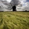El viento podría abastecer 1/10th de potencia del mundo en 2020