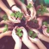 Consejos divertidos para cuidar el medio ambiente