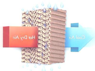 bioclimatizadores-filtro