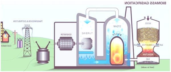 energia-electrica-biomasa