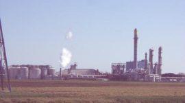 Alerta sobre los efectos del etanol en el medio ambiente