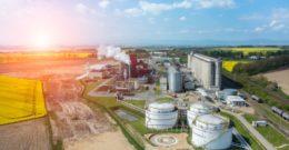 Diferencias entre el biocombustible y la biomasa