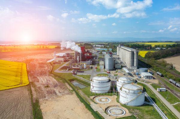 Biomasa biocombustible diferencias