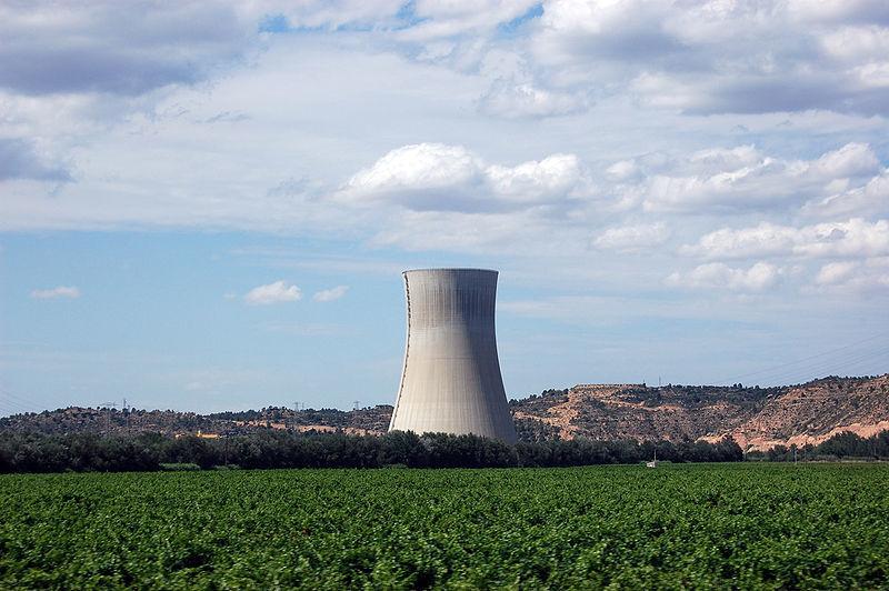 central nuclear asco