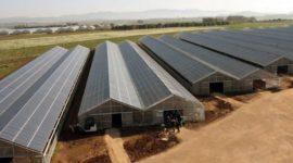Energia solar para invernaderos