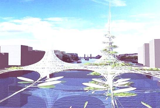puente-renovable