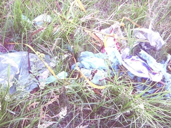 bolsas-plastico pasto