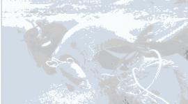 La isla de basura del Pacifico