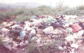 Producción de combustibles a partir de residuos
